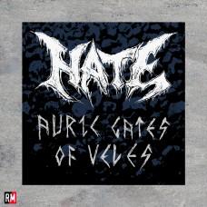 Печатная нашивка - Hate - Logo and Album name
